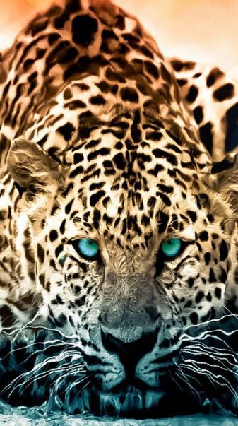 Animal Jaquar