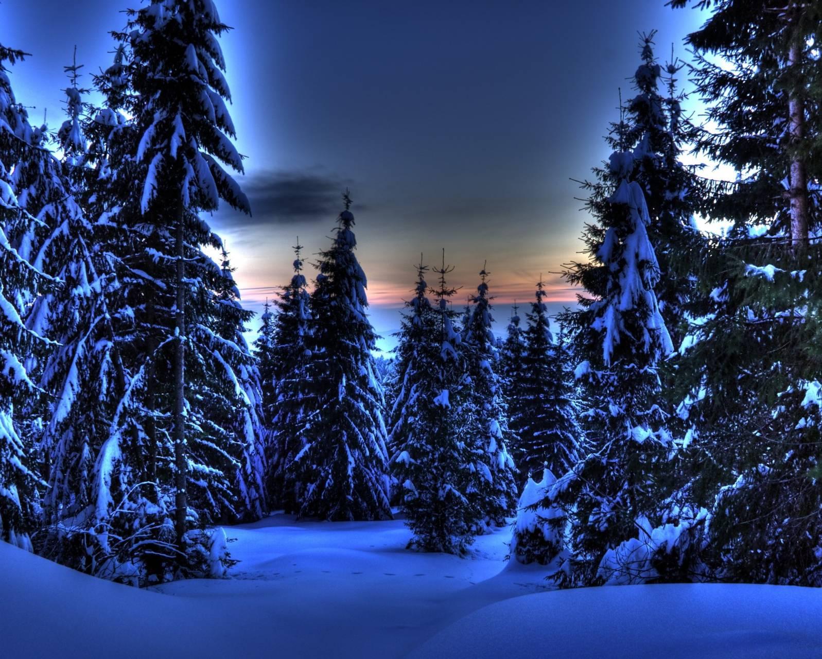 Hdr Winter