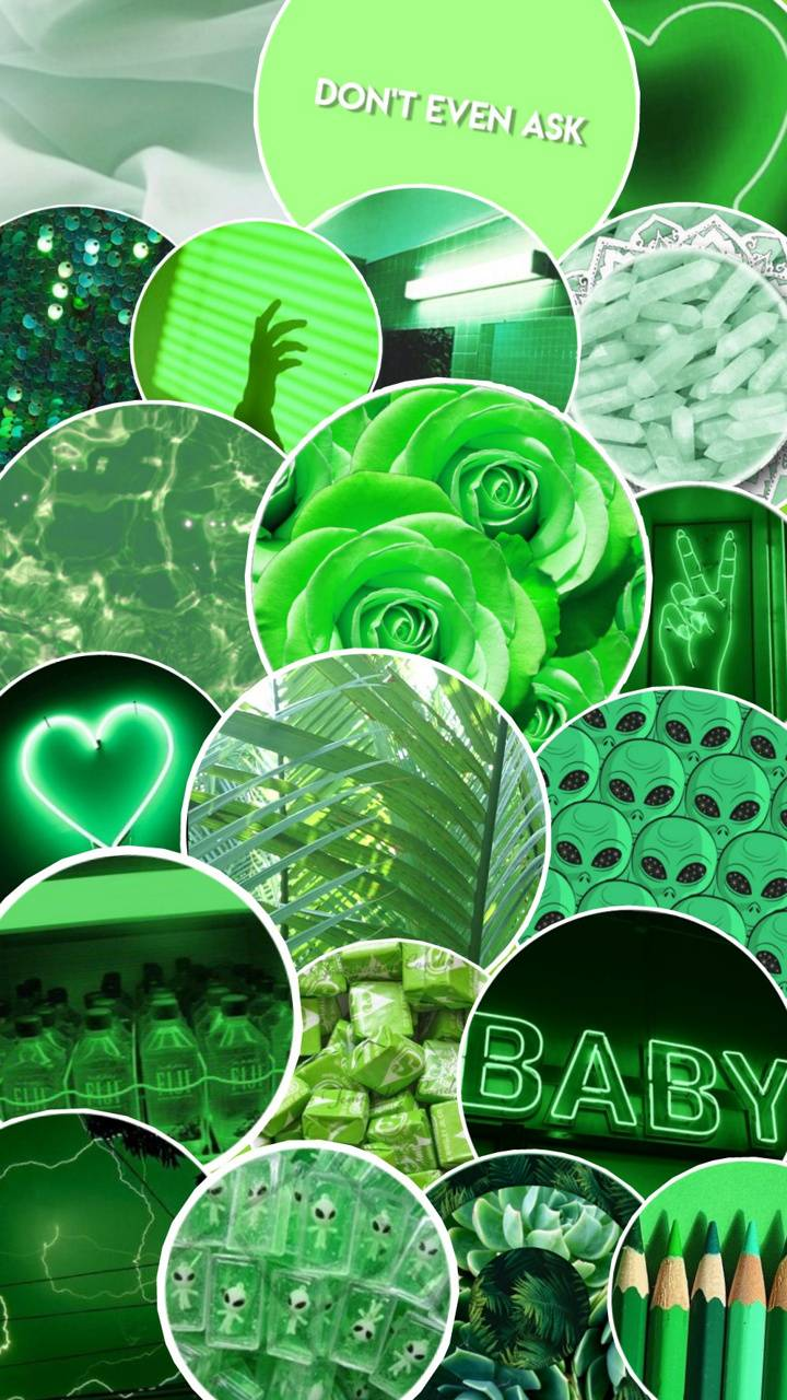 Green Aesthetic Wallpaper By Cassrainbow 95 Free On Zedge