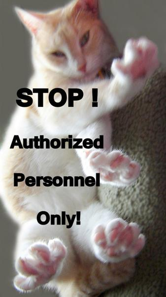 Stop Authorized Only