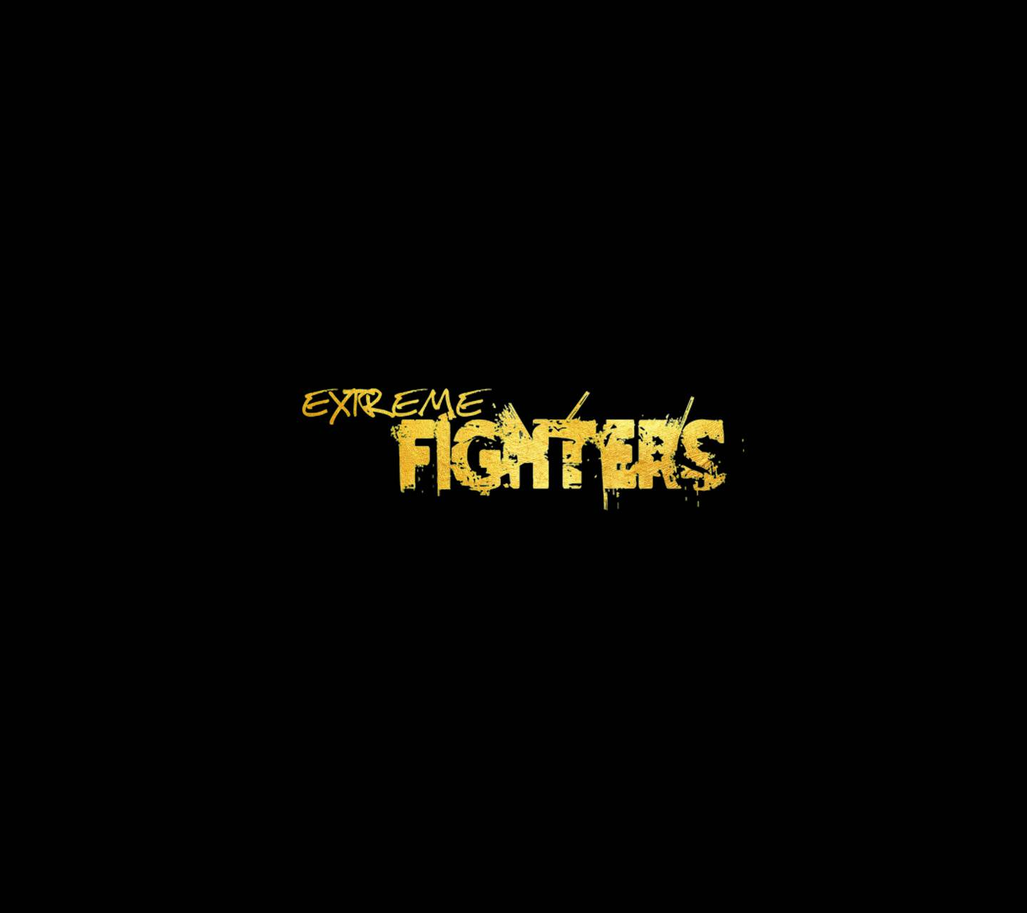 Gold Fighters