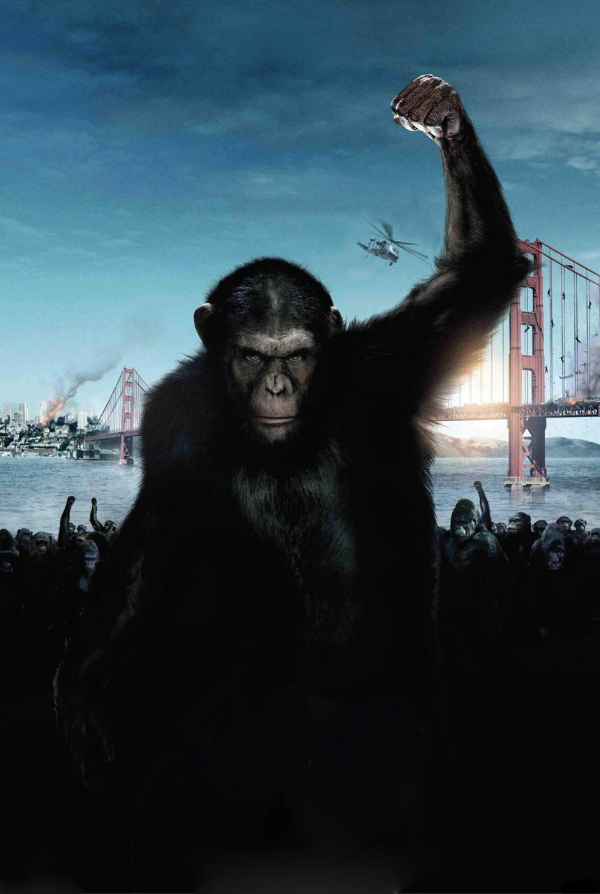Planet Of The Apes Wallpaper By Silverbull735 Ec Free On Zedge