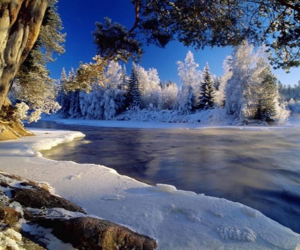 Hd Nature 575