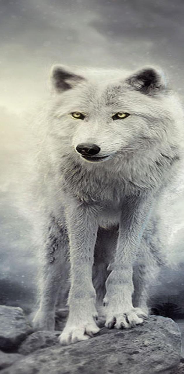 Winter Wolve