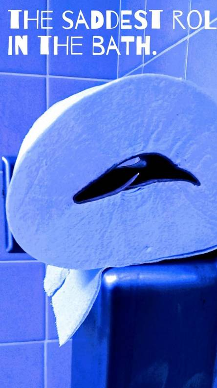 Blue in the loo