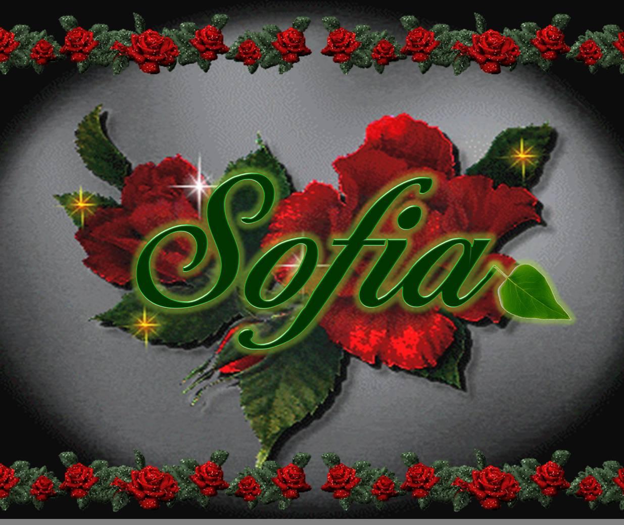 Sofia Name Wallpaper