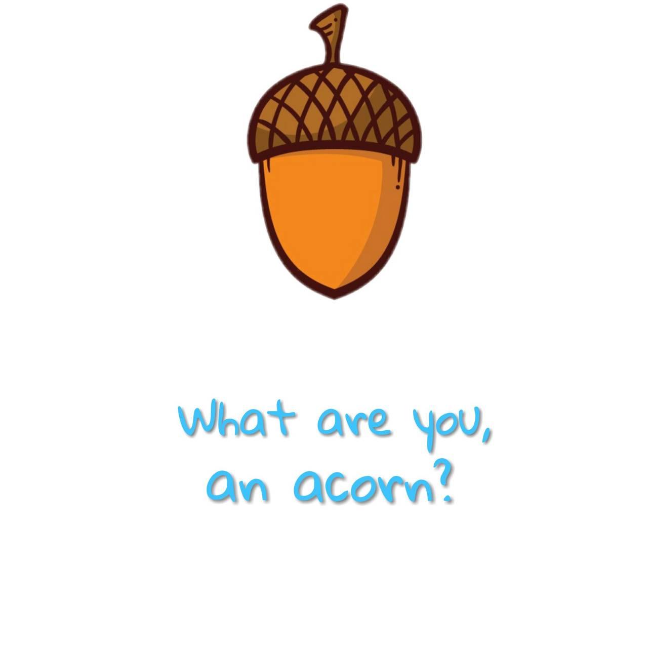 DEH Acorn
