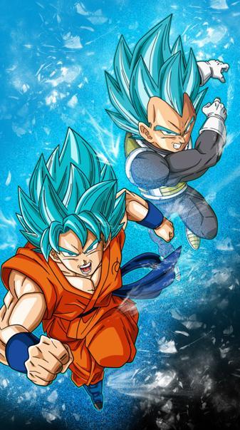 Goku Vegeta Blue