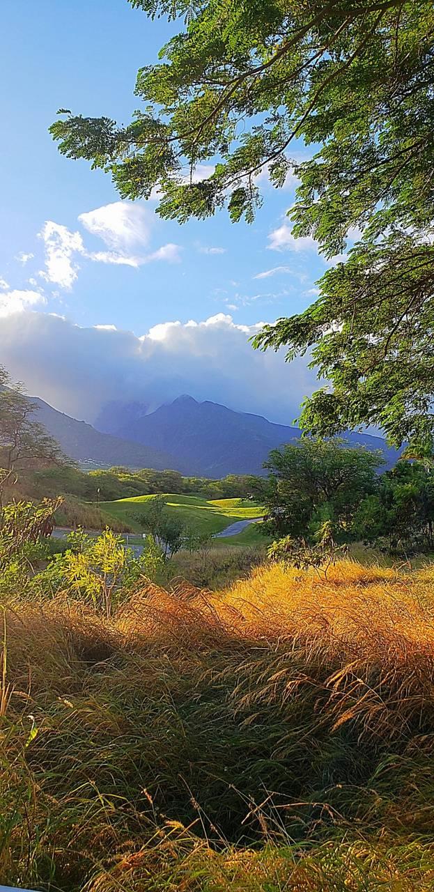 Maui mountain
