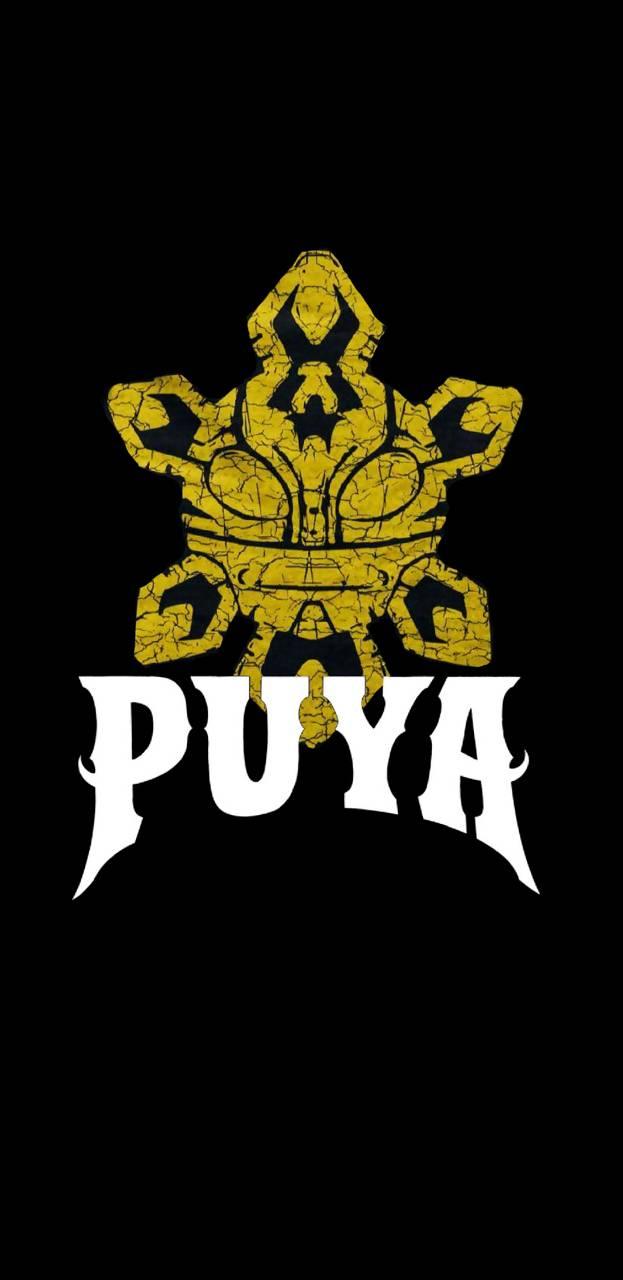 Puya Sol Taino