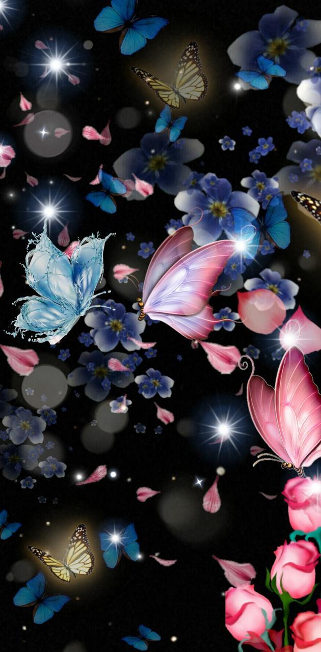 Butturflies