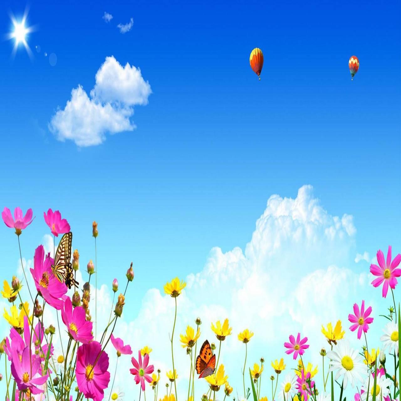 Flowery morning
