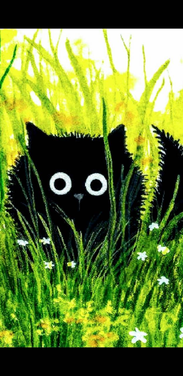 PUDDY IN GRASS