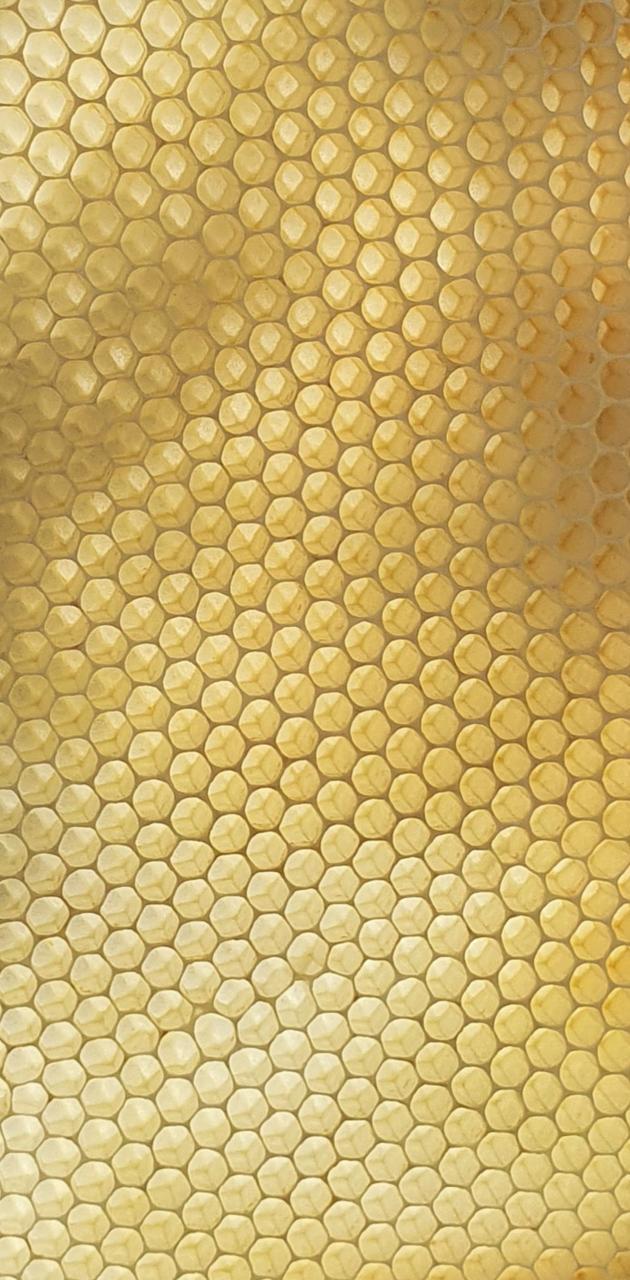 Honeycomb fresh
