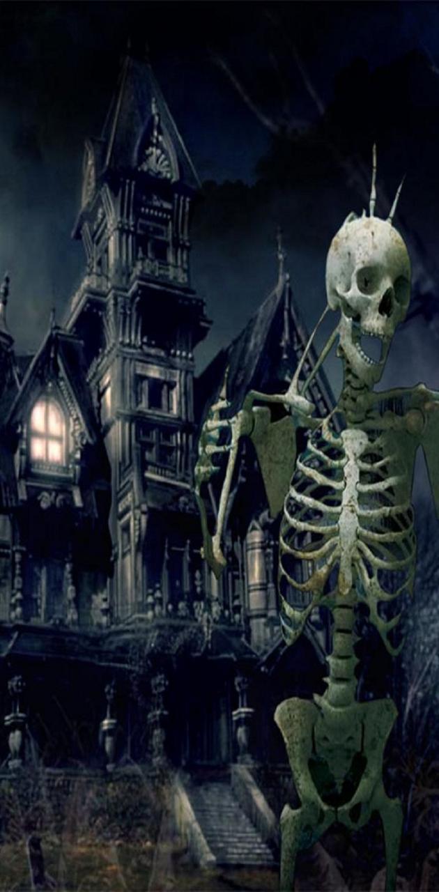 Skeleton Buddies hd
