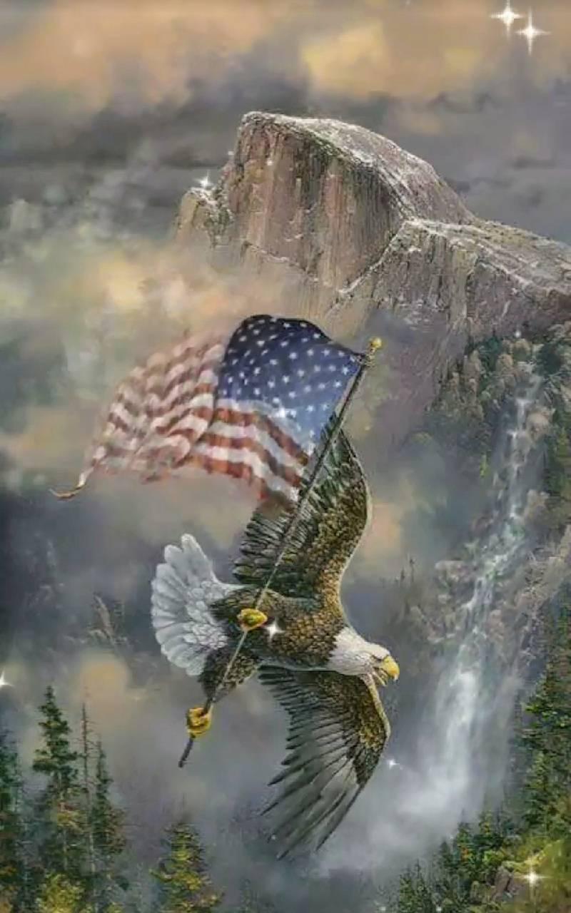 Awsome eagle