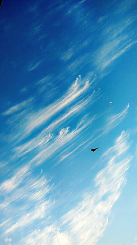 Ringtone Foo Fighters – The Sky Is A Neighborhood