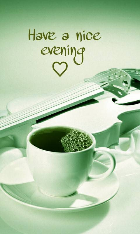Have A Nice Evening