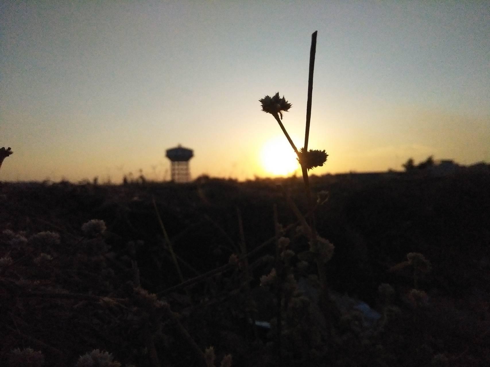 A little Sun set