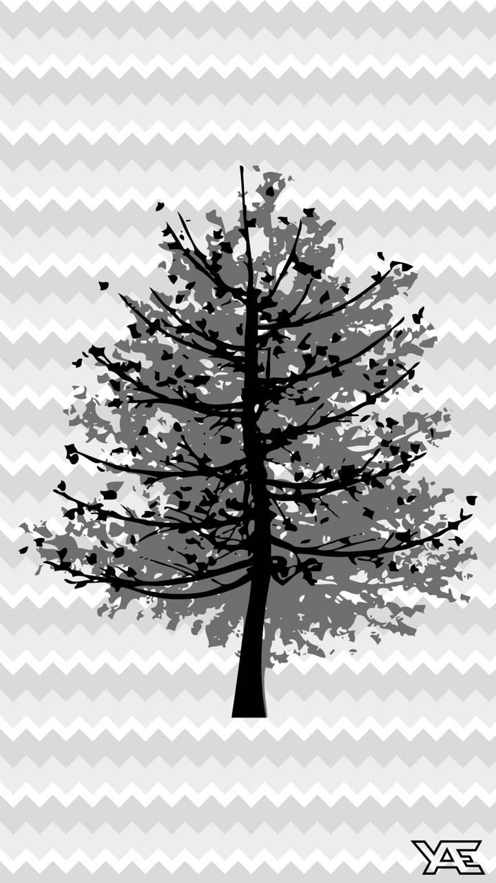 Shape of Tree