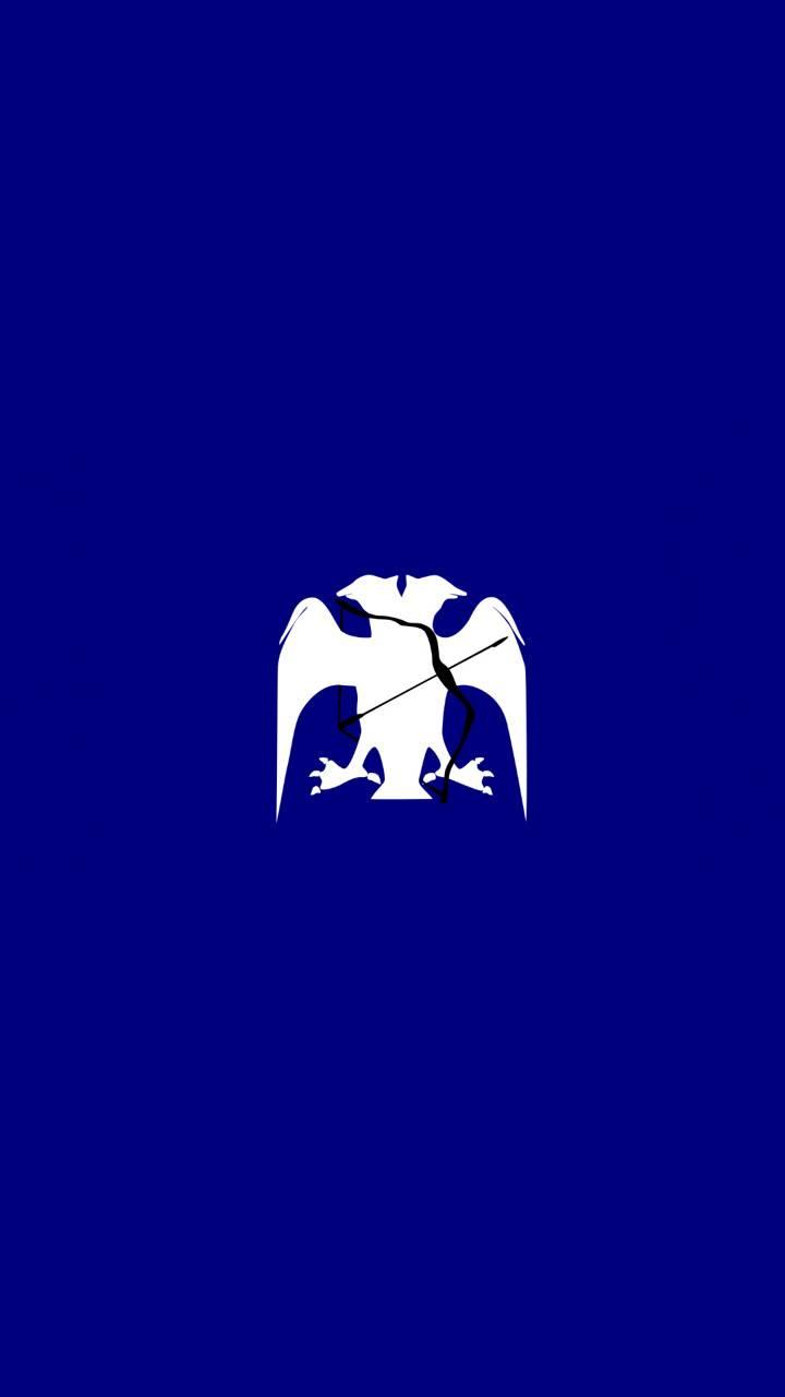 Anatolia Seljuk Flag