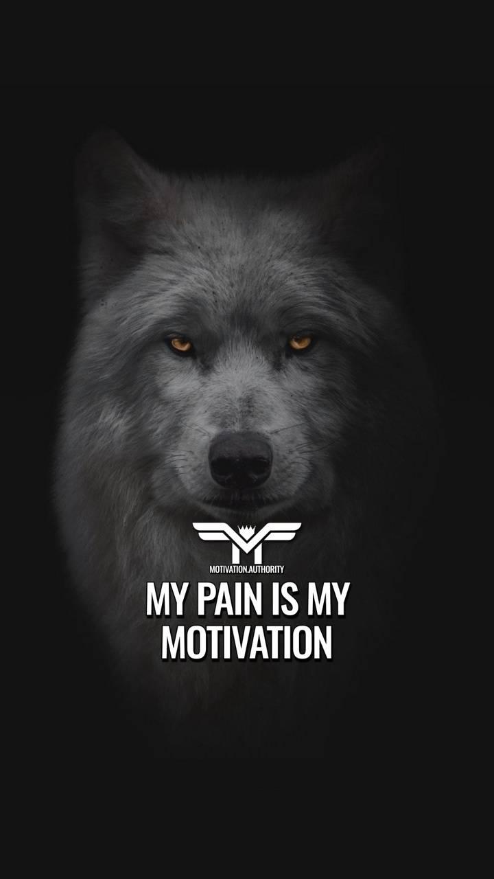 MotivationalQuote
