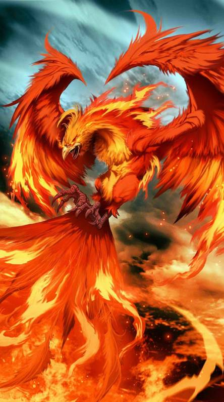 Phoenix Wallpapers Free By Zedge