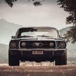 MustangGT500leo