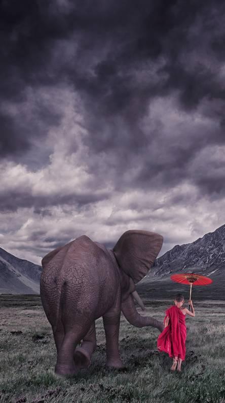Elephant And Monk