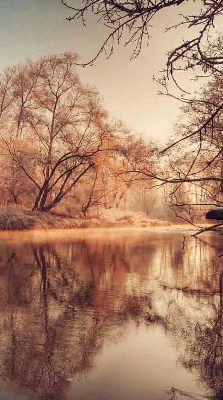 Xperia Z Autumn Lake