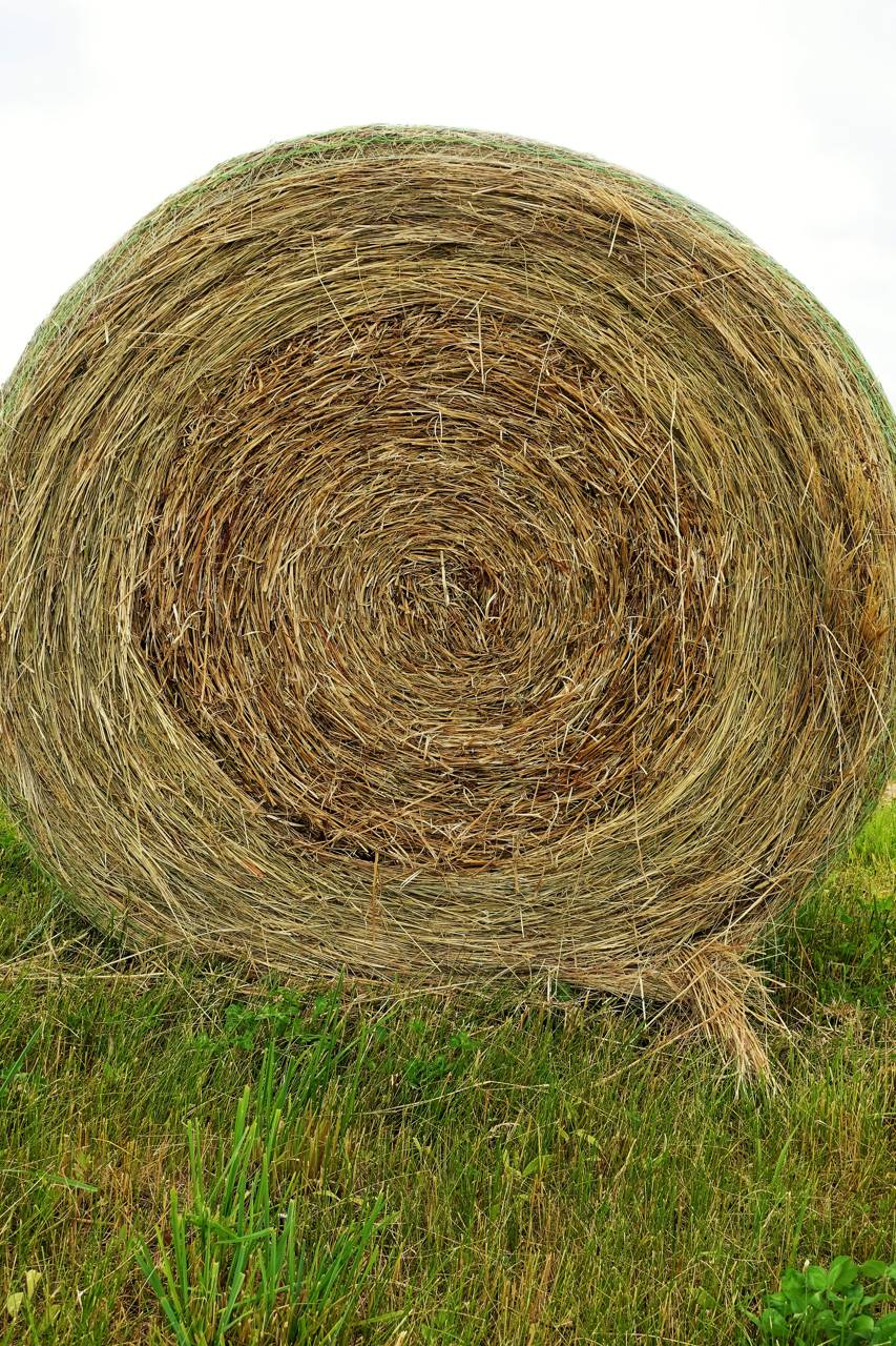 Bail of Hay