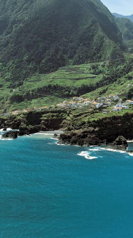 Island Homes 1