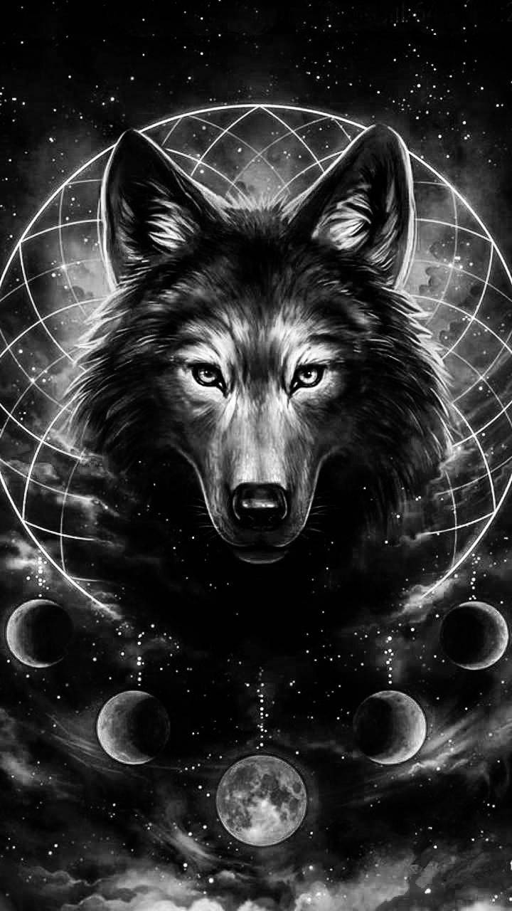 Wolf in the galaxy