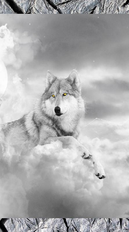 Wolf of the skies