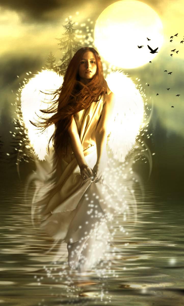 Angel Rise