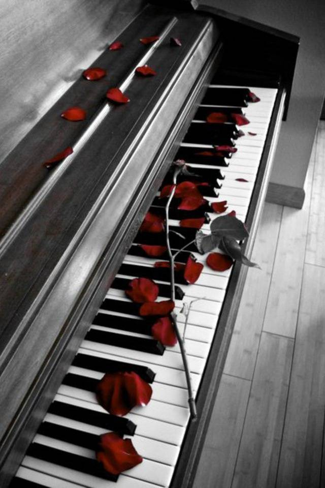Rose Piano Wallpaper By Izfo777