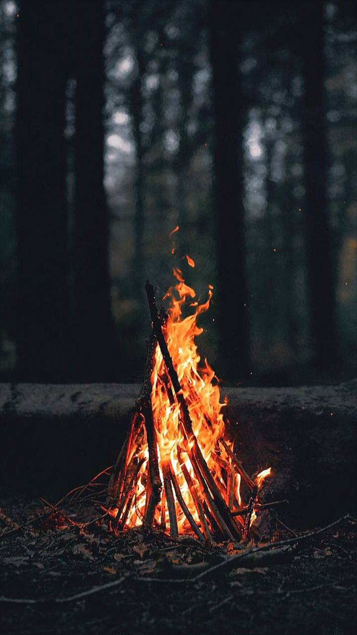wood and fire
