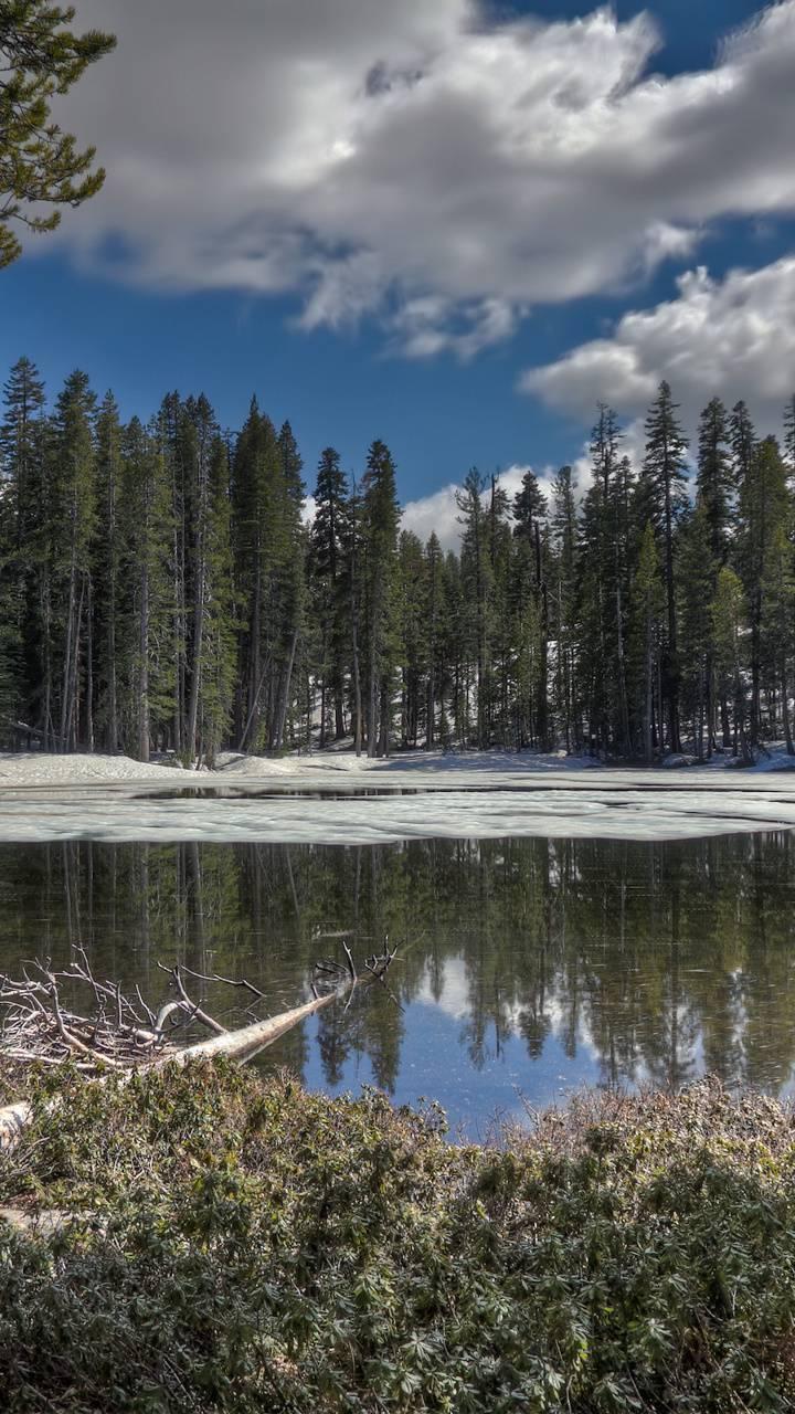 BSI Yosemite 05