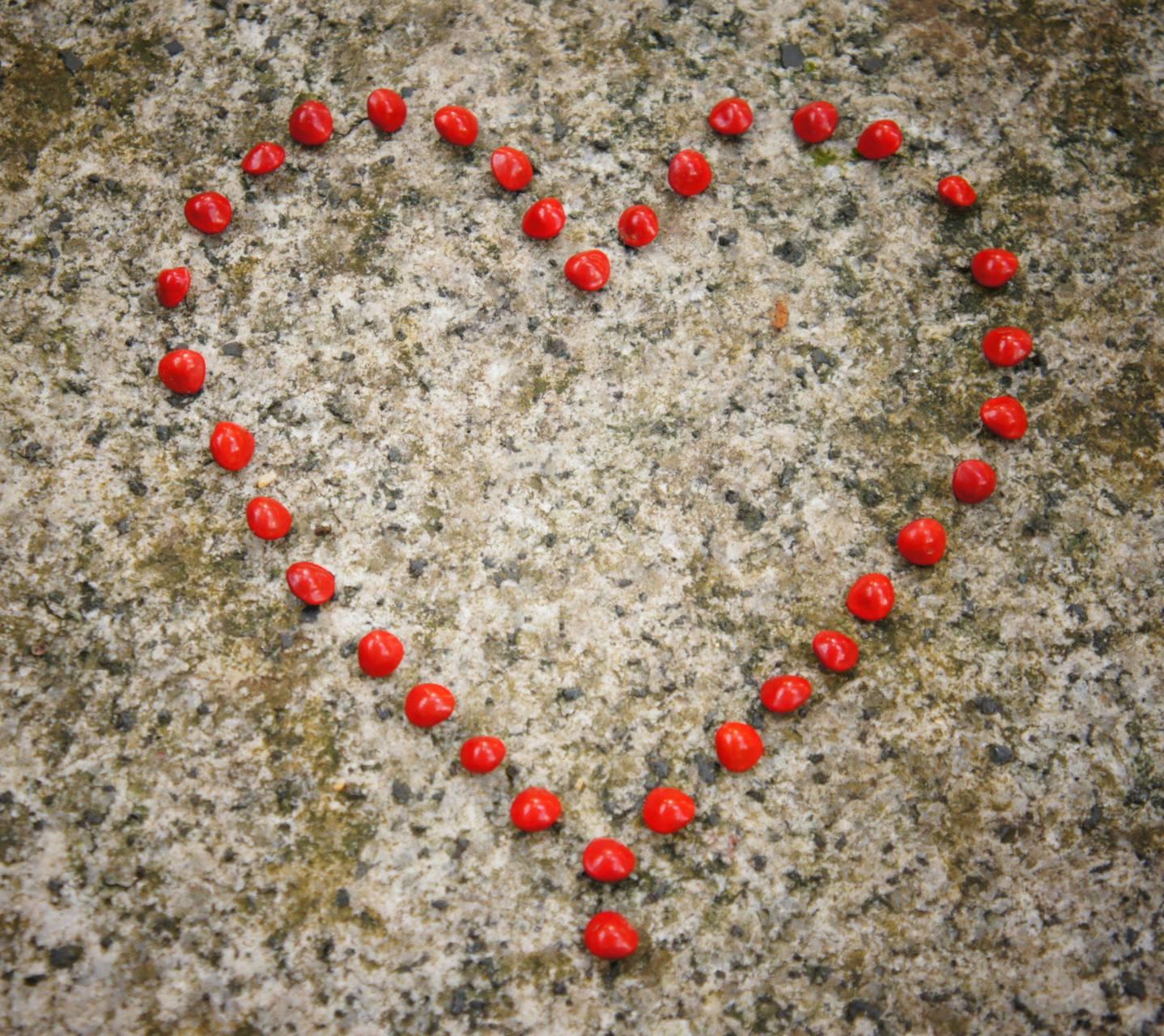 Heart art 1