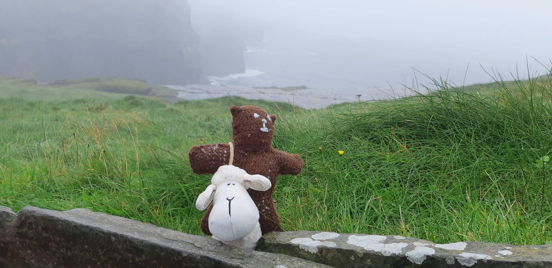 Sk8er Bear Ireland