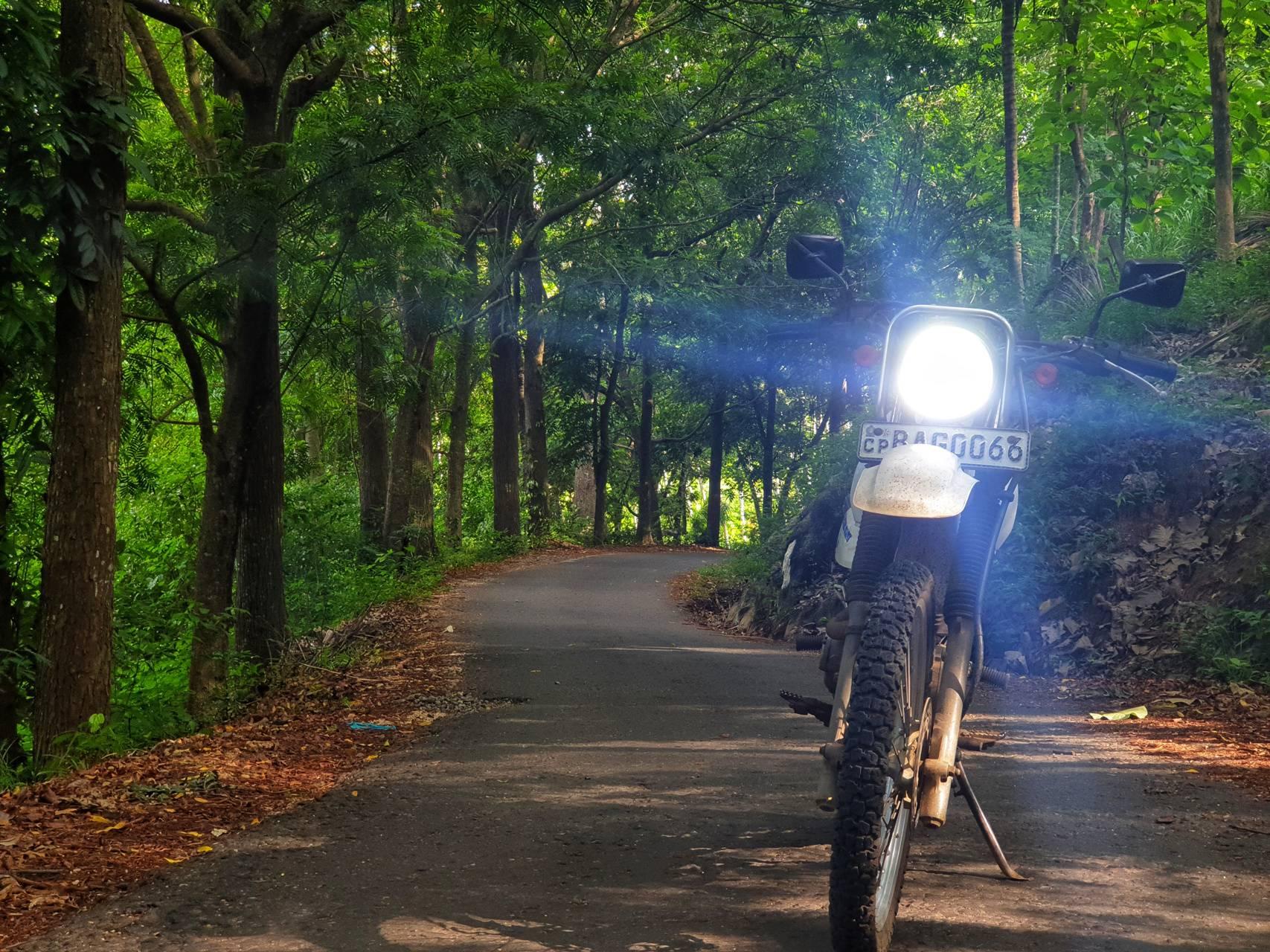 Sri lankan Rider