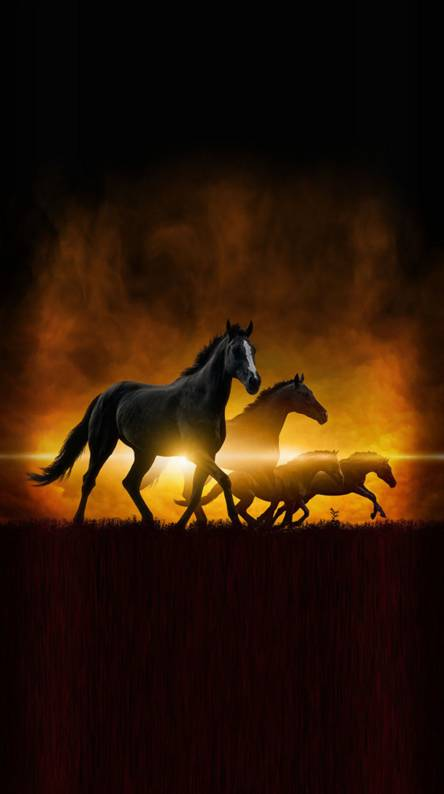 Running Horse Wallpapers Free By Zedge