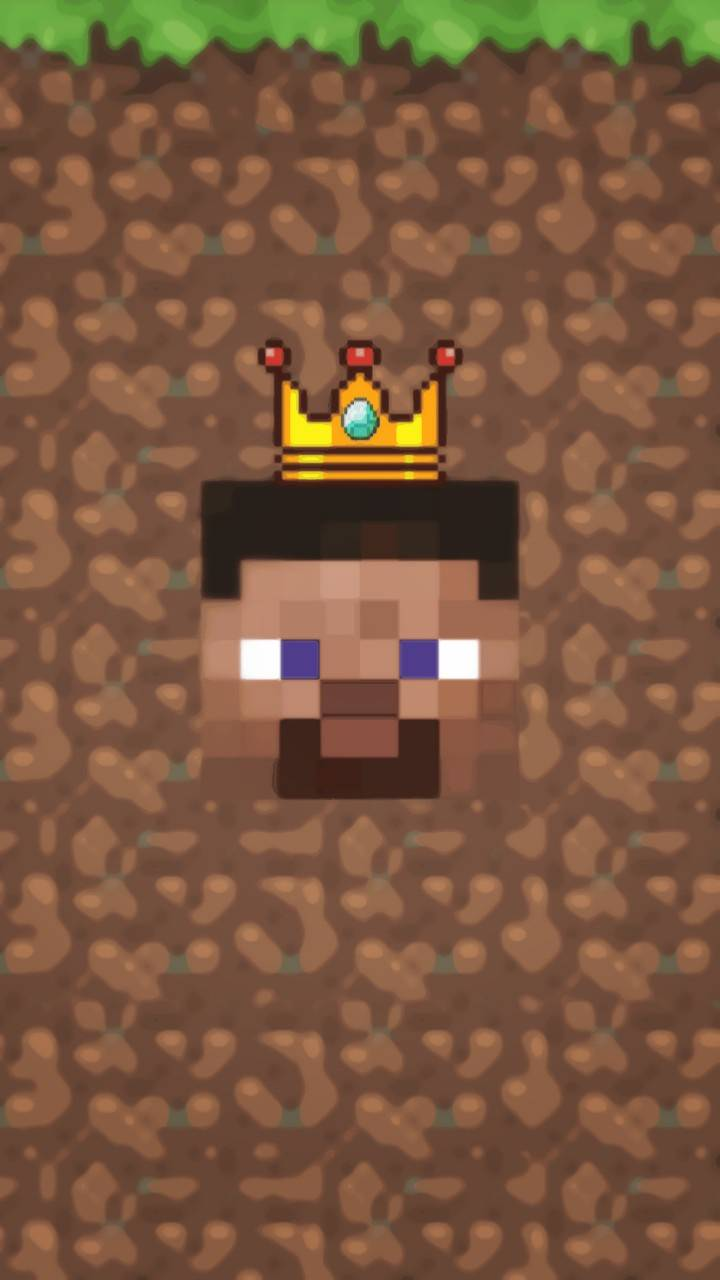 MINECRAFT THE KING