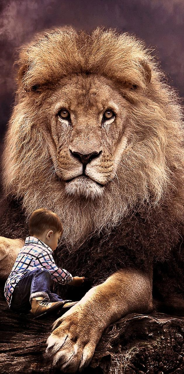 LION AND BOY