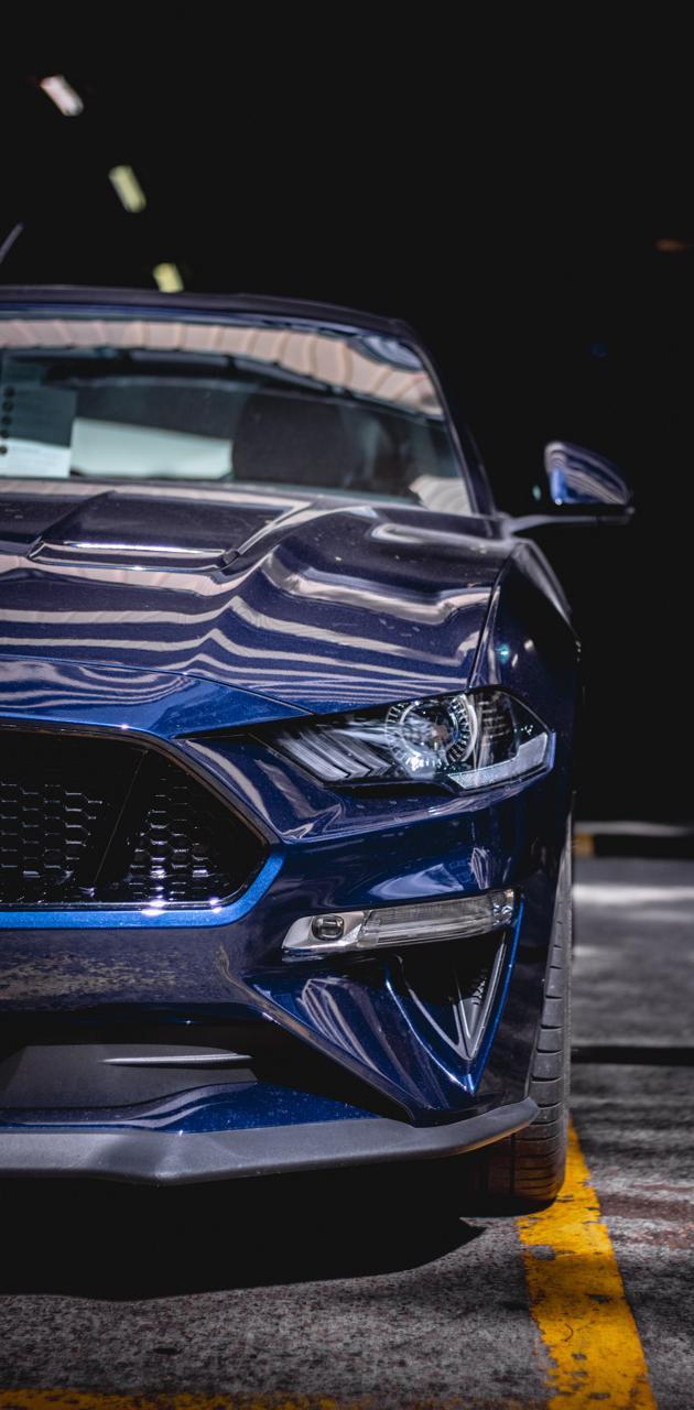 Dirty Mustang