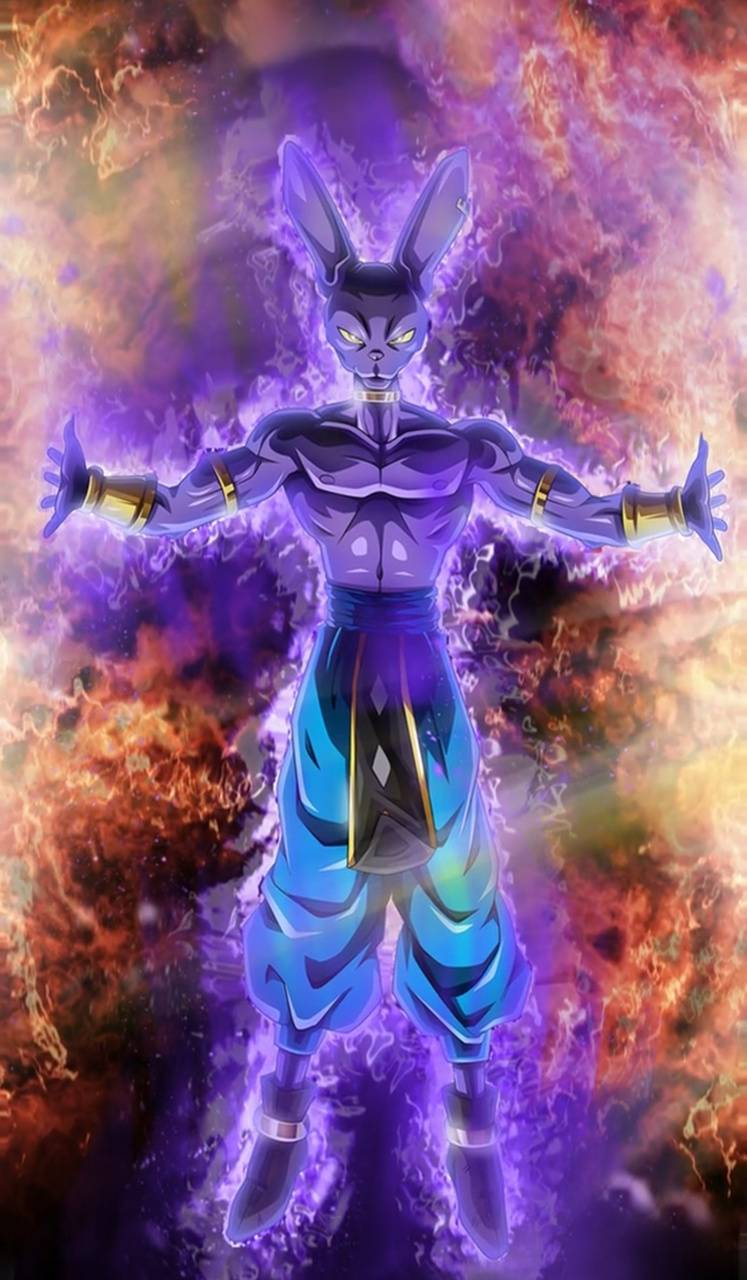 Lord Beerus Wallpaper By Mousecop001 7a Free On Zedge