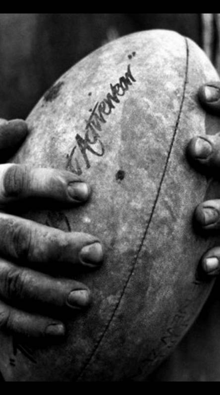 Rugby Wallpapers Free By Zedge
