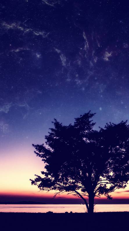 Tree planet