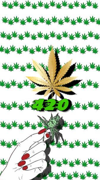 Bud 420