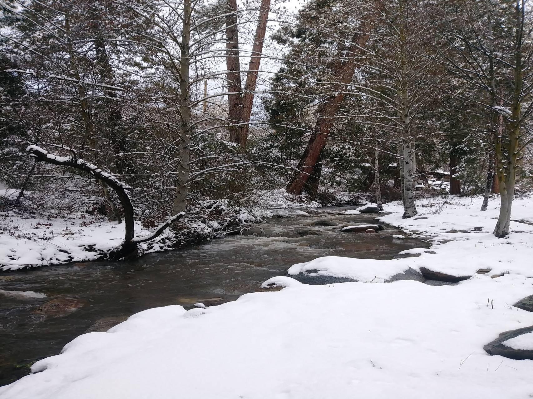 Snow along the creek